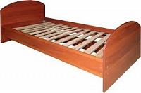 Плед флисовый,плед  теплый на кровать,пледы оптом для общежитий от 290 руб