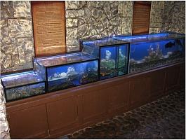 Торговые аквариумы для раков и живой рыбы Симферополь, Севастополь, Ялта, Крым