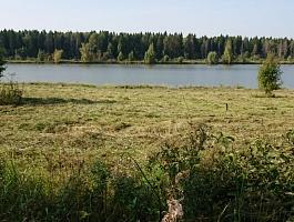 10 соток у Воды, Можайский р-н.