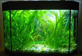 Изготовление освещения для аквариума