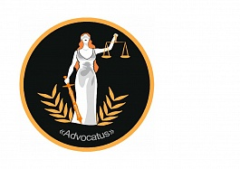 Профессиональное оказание юридической помощи